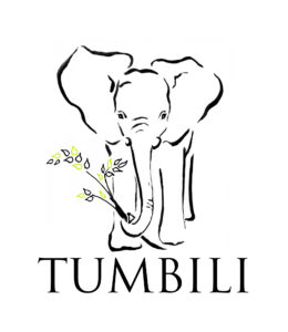 Association Tumbili